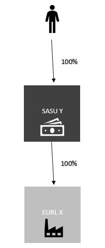 Schéma : le Président d'une SASU qui détient une EURL est-il TNS ?